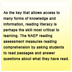 As the key that allows access to many forms of knowledge and information, reading literacy is perhaps the skill most critical to learning. The NAEP reading assessment measures reading comprehension by asking students to read passages and answer questions about what they have read.
