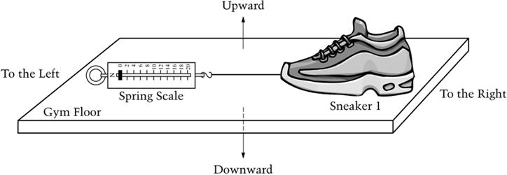"A rectangular illustration of a gym floor labeled ""To the Left,"" ""Upward,"" ""To the Right,"" and ""Downward."" On the gym floor is a Spring Scale. A string extends from the scale to Sneaker 1."